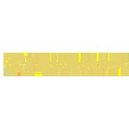 Logo Rich Casino